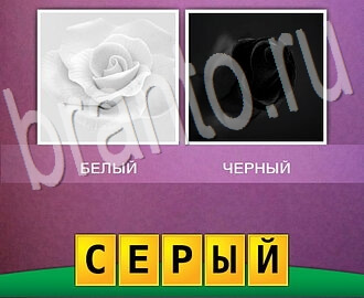 две картинки одно слово ответы