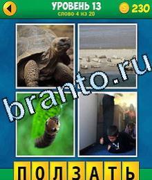4 позитив 0 ответ игрище ответы 03 точка ответ 0 черепаха, морские котики тюлени, гусеница, дети