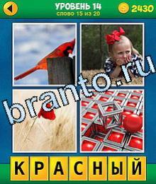 4 Фото 0 Слово потеха ответы жаба жирафа, жаба собаки, коричневые ботинки, бульдог