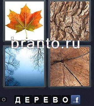 4 фото 1 слово 5 буквы все ответы в картинках 12