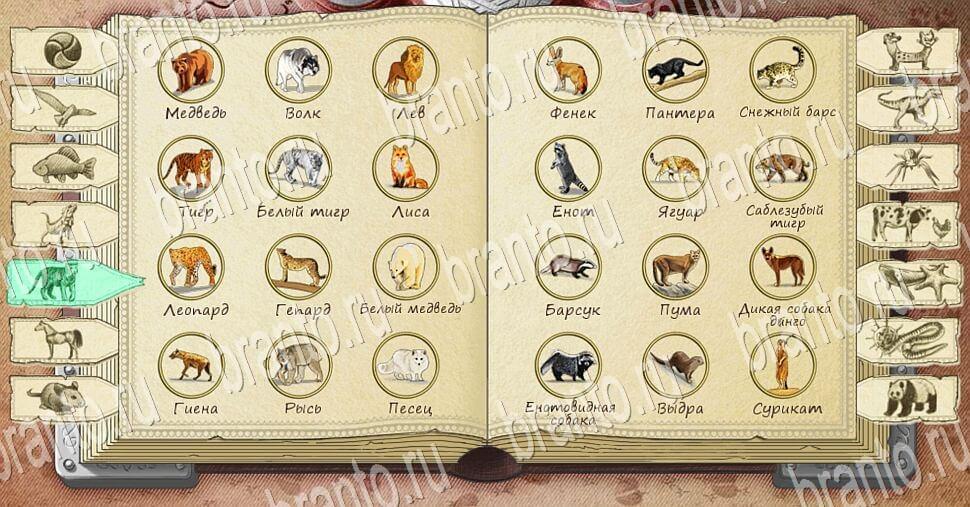 ответы на игру Алхимия на бумаге Животные