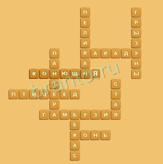 домашняя птица 4 буквы ответ