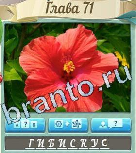 Цветик семицветик игра в одноклассниках ответы на все уровни