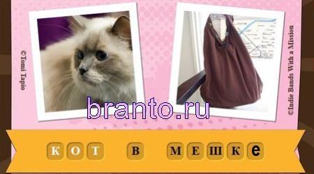 Игра Фразы ответы с самого начала: кот в мешке
