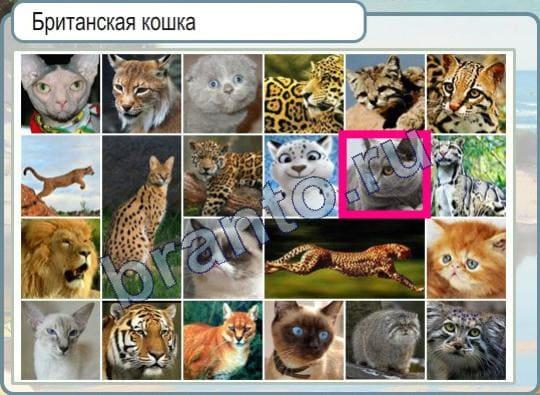 Хрустальная картина Логотип Митсубиси за 3800 рублей