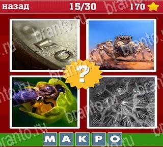 Угадай слово по 4 картинками ответы слово из 7 букв 6