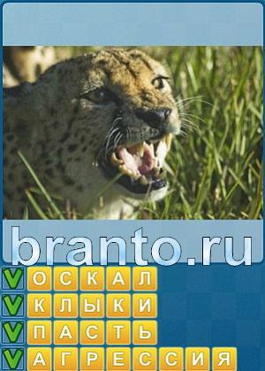 Ответы на игру найди слова уровень 248