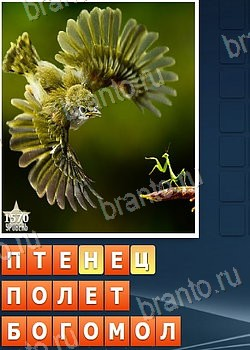 Угадай слово 4 картинки одно слово ответы уровень 1 4
