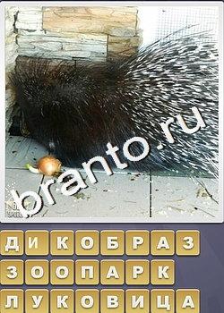 ЯндексКартинки поиск изображений в интернете поиск по