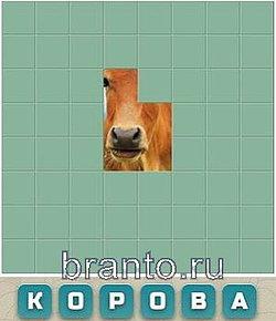 Игра угадай слово по 4 картинкам ответы на все уровни по буквам 3