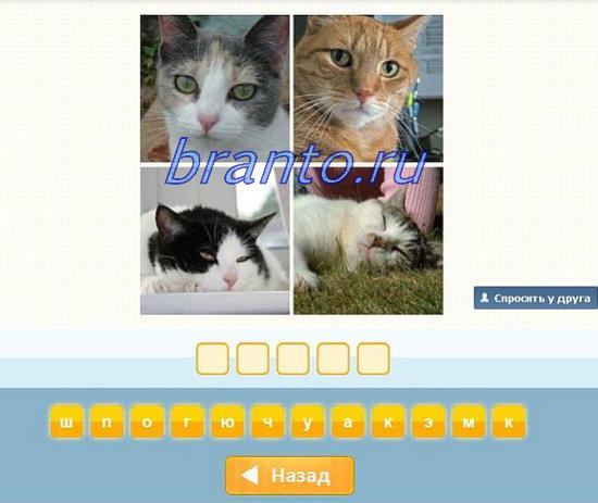 Игра угадай слово ответы 4 буквы все ответы в картинках