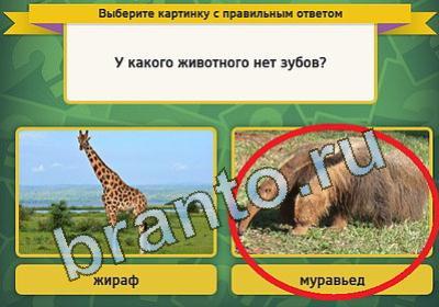Ответы к играм в Одноклассниках и ВКонтакте - игра
