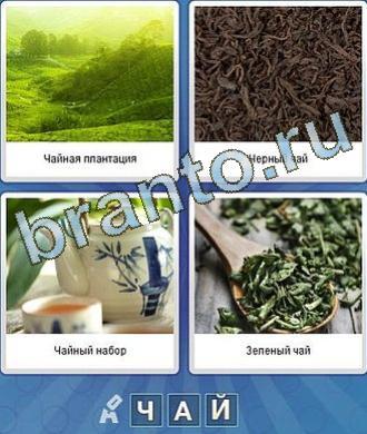 Игра что за слово: трава, что-то зелёное, заварка, сухие листья, чайник, ложка