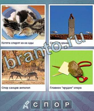 разум и 4 буквы - фото 8