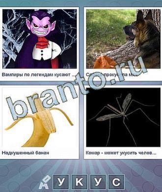 дракула, собака с мячиком (волк), банан, комар