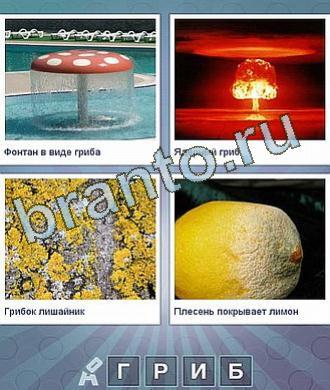фонтан в виде мухомора, ядерный взрыв, плесень на испорченном лимоне