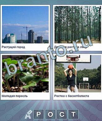 стройка города, лес (деревья), маленькие ростки, девушка сидит на плечах у парня под баскетбольным кольцом