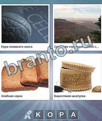 відповіді на гру что за слово? уровень 88: пластмассовый мозг, гора, 3 куска хлеба, круглая коробочка