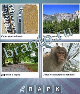 машины, лес и горы, тропинка, обезьяна