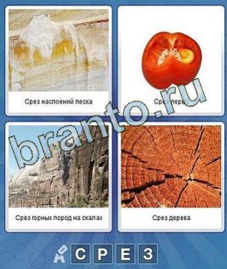 Что за слово? ВК 4 буквы ответы песок, перец, скала, дерево