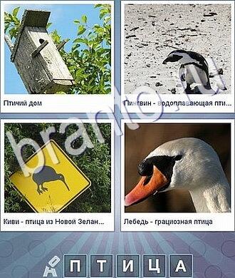 что за слово ответы на фото изображены скворечник, пингвин, знак, лебедь