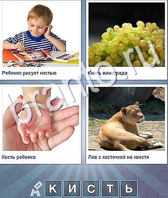 на рисунках мальчик, виноград, рука младенца, лев