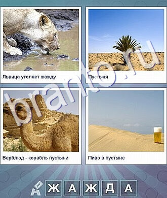 ответы на игру Что за слово, уровень 103: львица пьёт, пальма в пустыне, верблюд, пиво