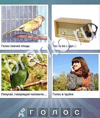 Что за слово ответы: птица в клетке, старое радио, зелёный попугай, девушка разговаривает по мобильнику телефону, сотовому