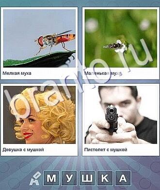 помощь к игре что за слово оса, пчела, девушка с родинкой, мужчина с пистолетом