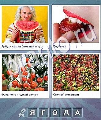 Что за слово арбуз, клубника, оранжевые цветы, ягоды