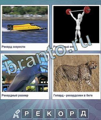 лодка, катер, человечек с гантелями, касатка дельфин, рысь, пятнистая кошка