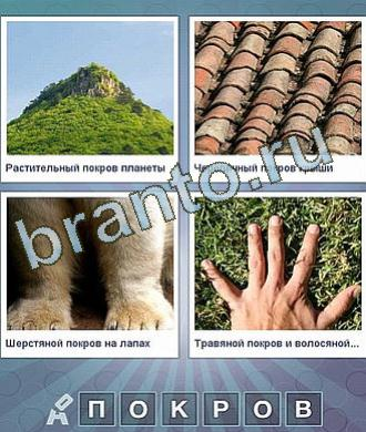 Что за слово игра ответы, уровень 199: гора, черепичная крыша, собачьи лапы, рука на траве