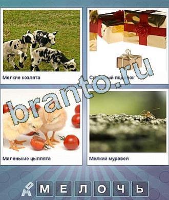 Что за слово помощь телята, подарки, цыплята, муравей