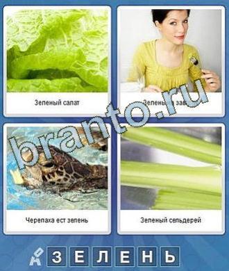 ответы к игре что за слово салат девушка черепаха сельдерей