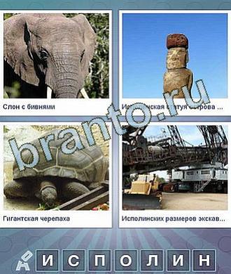 На рисунках изображены черепаха, слон, тотем идол, стройка кран