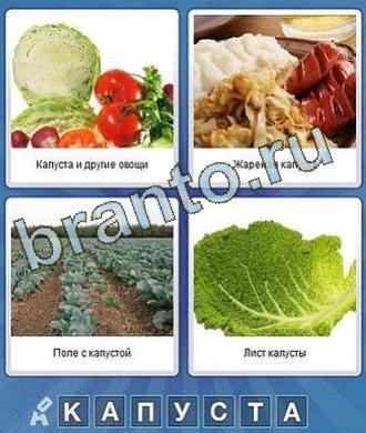 Что за слово ответы овощи, макароны и сосиски, поле, лист