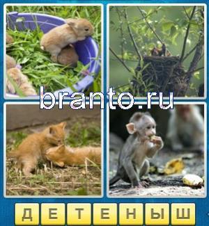 Ответы 4 фотки одно слово рулетка винт