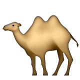 Guess the Emoji answers camel