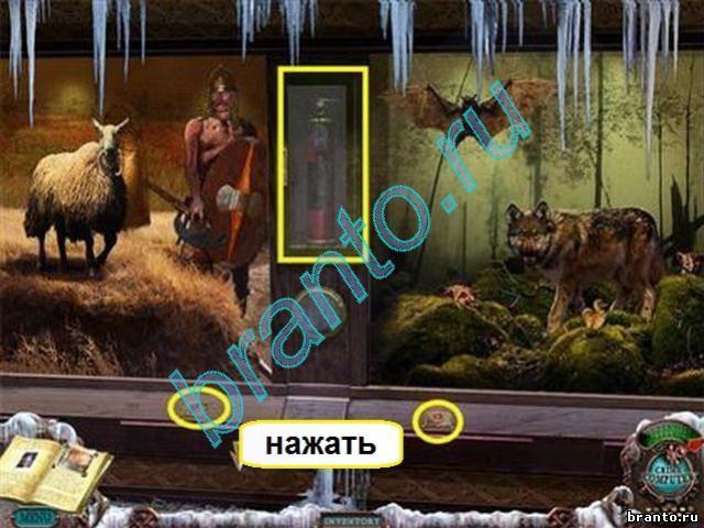 варочные панели со знаком зодиака
