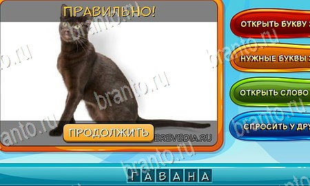 шел один угадай фото 126-150 уровень Архангельск Бизнес