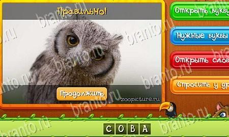 Игра Угадай слово по картинкам играть онлайн бесплатно