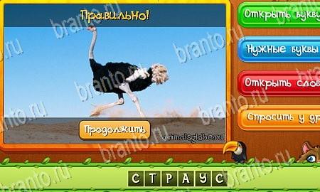 Игры Угадай слово  играть бесплатно на QuickSavesu